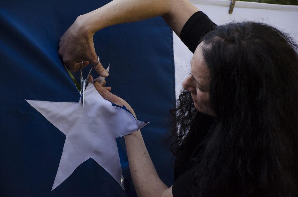 La bandera Janet Toro 1